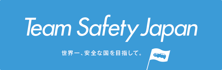 Team Safety Japan